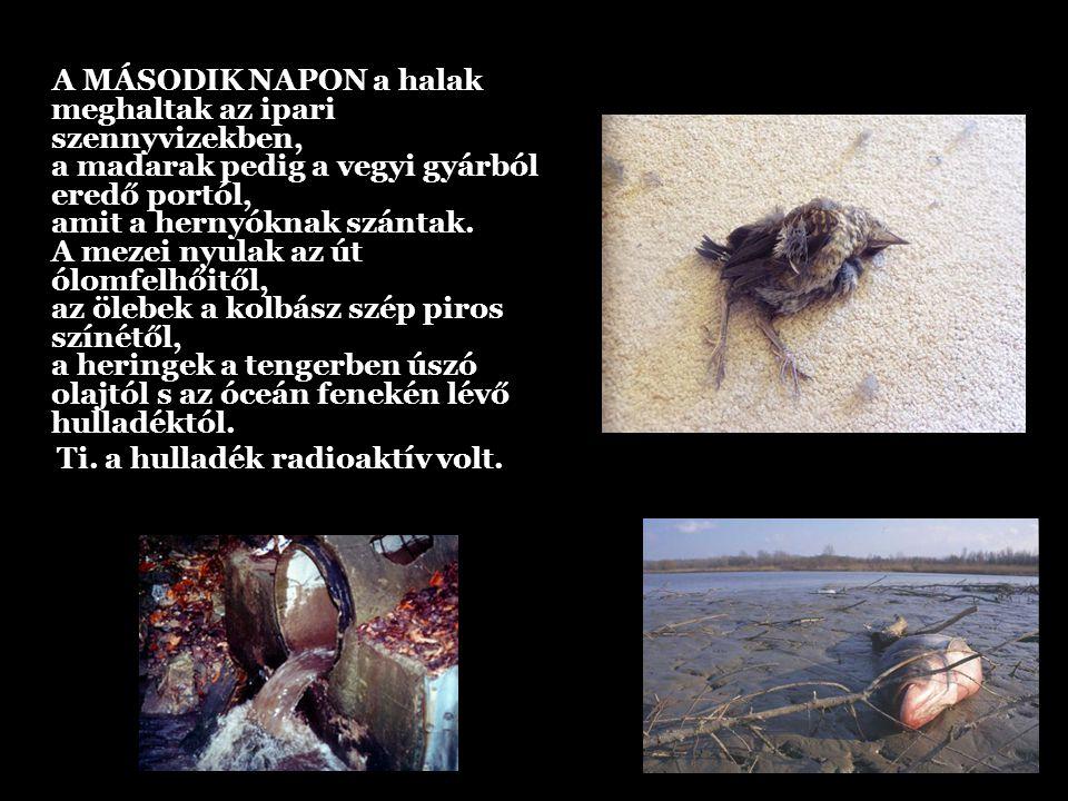 A MÁSODIK NAPON a halak meghaltak az ipari szennyvizekben, a madarak pedig a vegyi gyárból eredő portól, amit a hernyóknak szántak. A mezei nyulak az út ólomfelhőitől, az ölebek a kolbász szép piros színétől, a heringek a tengerben úszó olajtól s az óceán fenekén lévő hulladéktól.