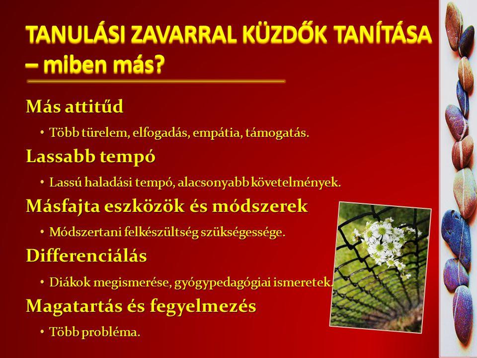 TANULÁSI ZAVARRAL KÜZDŐK TANÍTÁSA