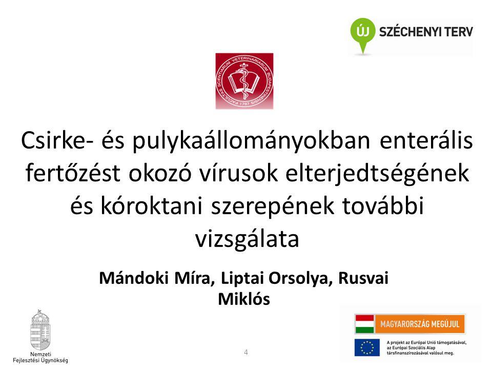 Mándoki Míra, Liptai Orsolya, Rusvai Miklós