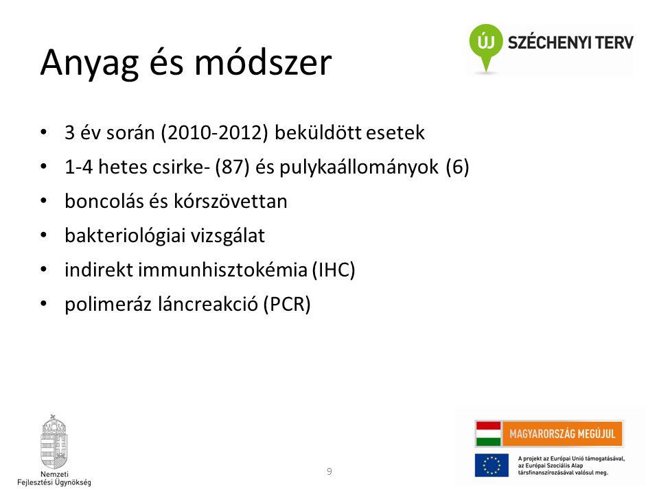 Anyag és módszer 3 év során (2010-2012) beküldött esetek