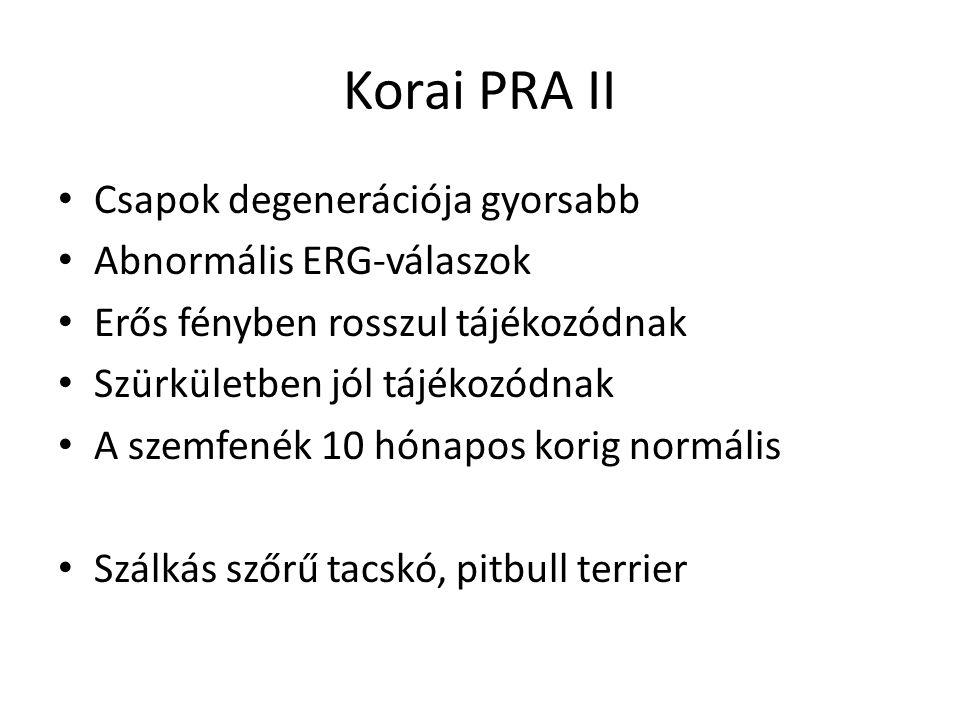 Korai PRA II Csapok degenerációja gyorsabb Abnormális ERG-válaszok