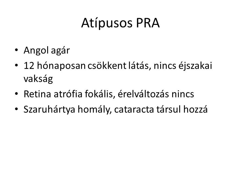 Atípusos PRA Angol agár