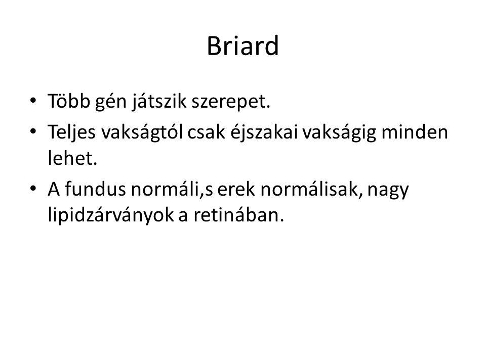 Briard Több gén játszik szerepet.
