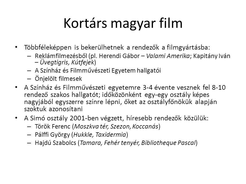 Kortárs magyar film Többféleképpen is bekerülhetnek a rendezők a filmgyártásba:
