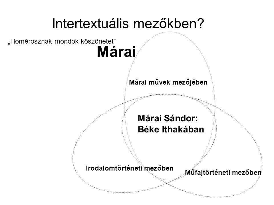 Intertextuális mezőkben
