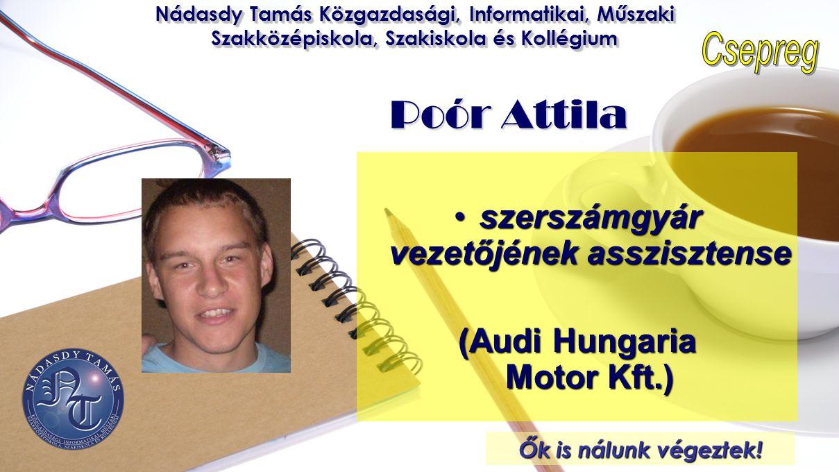 szerszámgyár vezetőjének asszisztense (Audi Hungaria Motor Kft.)