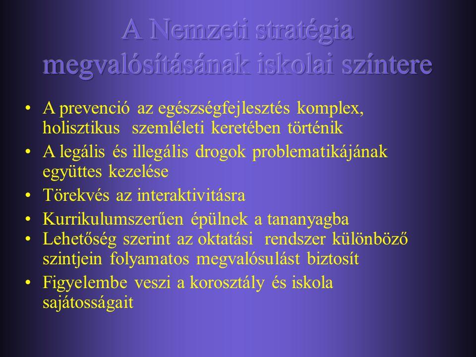 A Nemzeti stratégia megvalósításának iskolai színtere