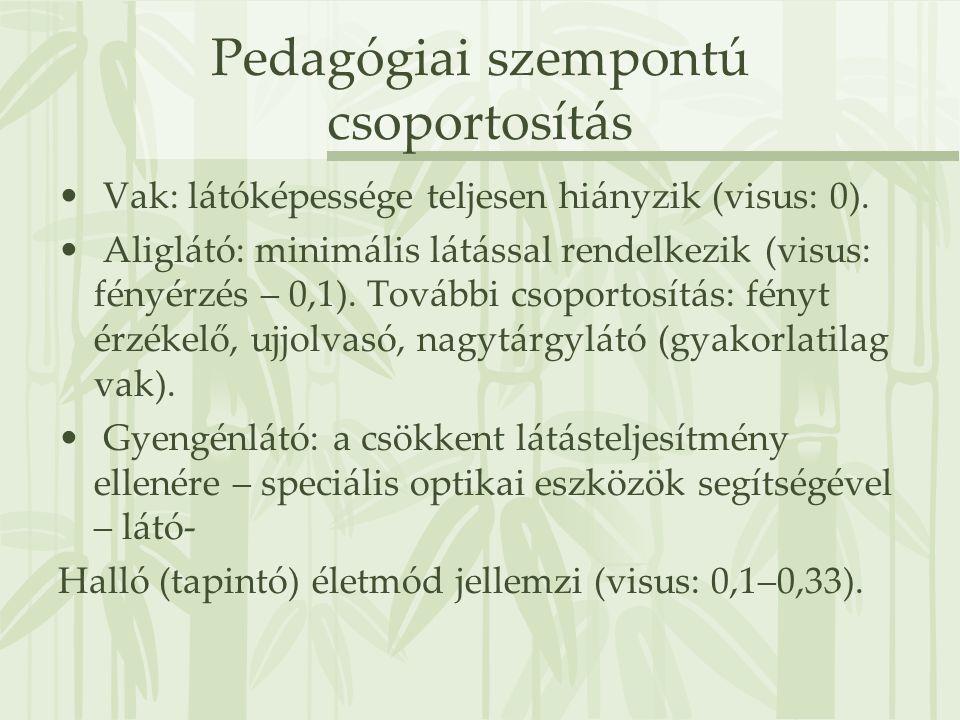 Pedagógiai szempontú csoportosítás