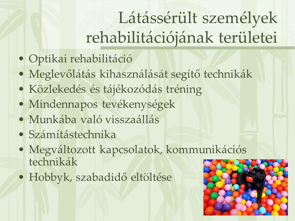 Látássérült személyek rehabilitációjának területei