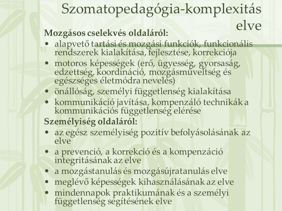 Szomatopedagógia-komplexitás elve