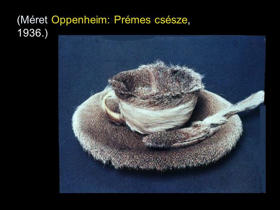 (Méret Oppenheim: Prémes csésze, 1936.)