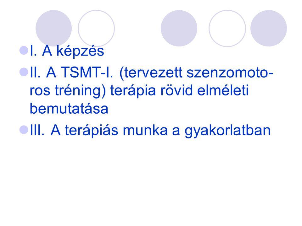 I. A képzés II. A TSMT-I. (tervezett szenzomoto-ros tréning) terápia rövid elméleti bemutatása.