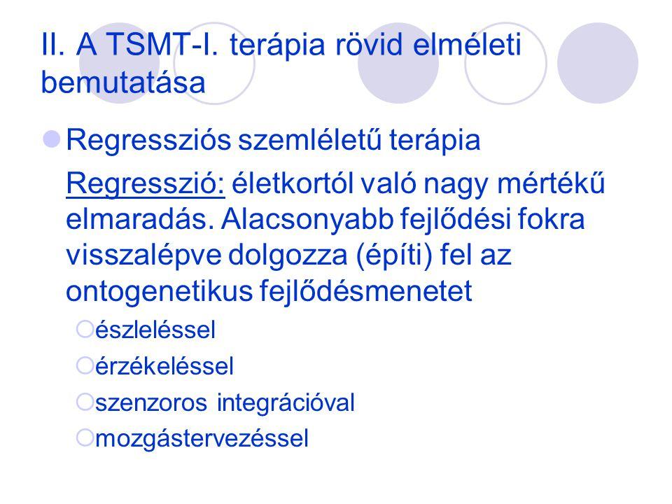 II. A TSMT-I. terápia rövid elméleti bemutatása