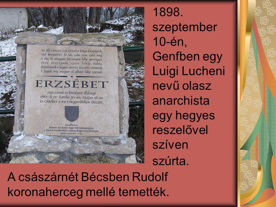 1898. szeptember 10-én, Genfben egy Luigi Lucheni nevű olasz anarchista egy hegyes reszelővel szíven szúrta.