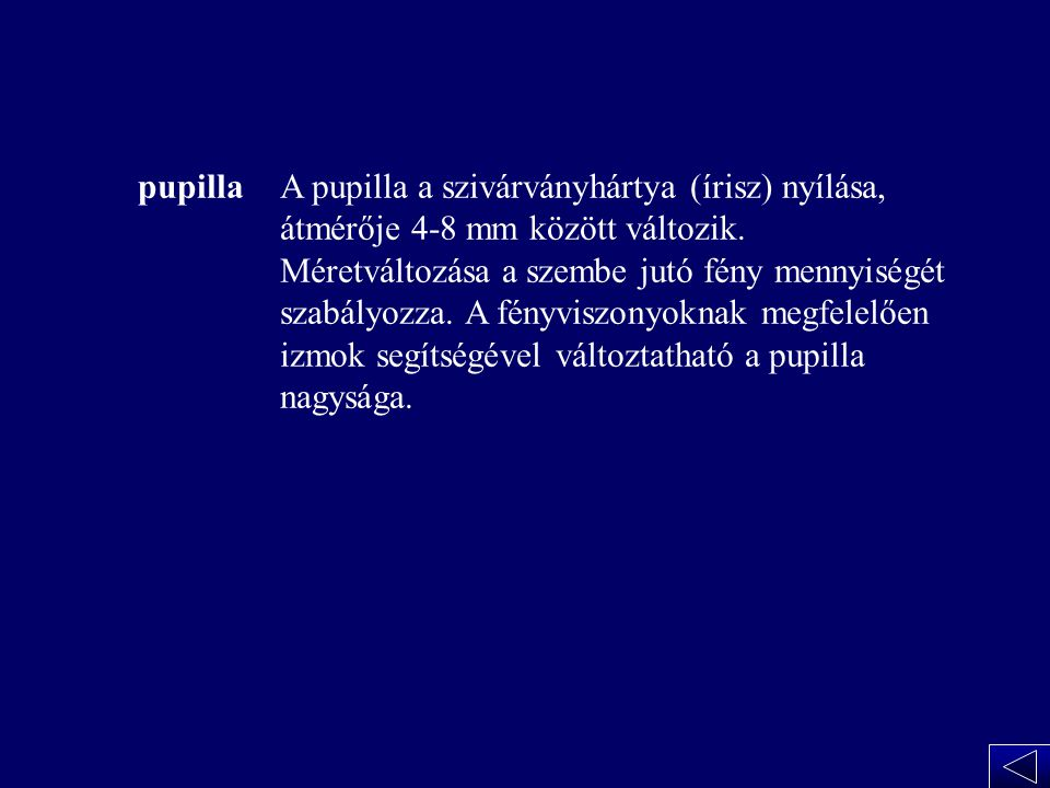 A pupilla