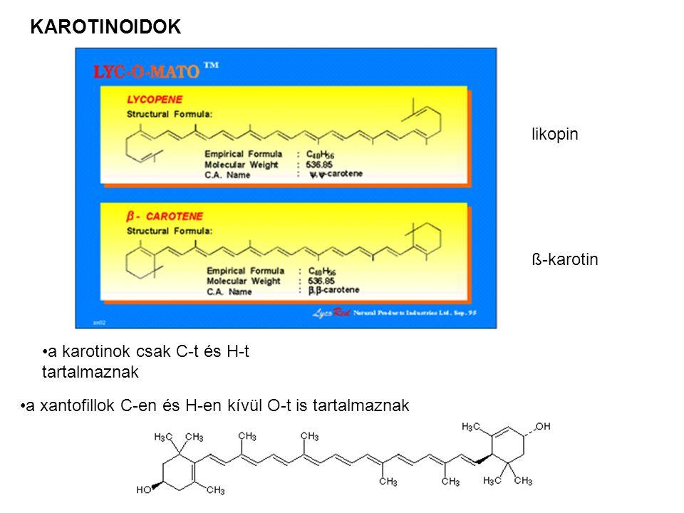 KAROTINOIDOK likopin ß-karotin