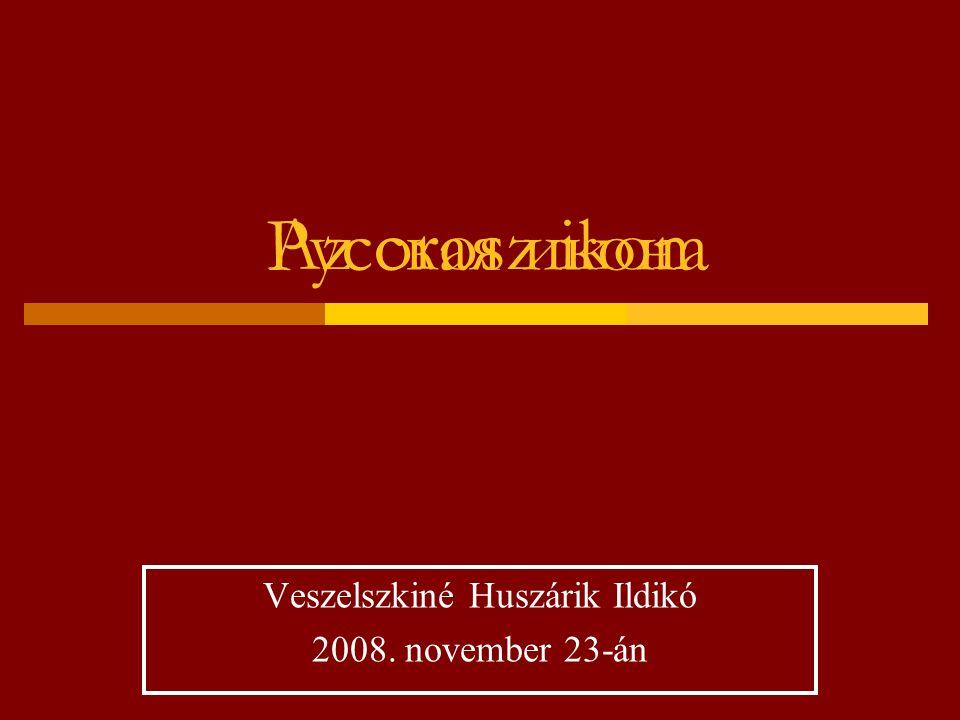 Veszelszkiné Huszárik Ildikó 2008. november 23-án
