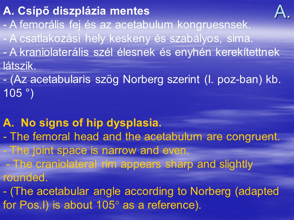 A. A. Csípő diszplázia mentes