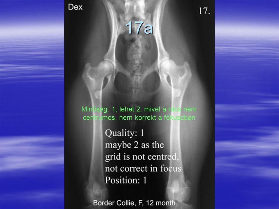 17a Minőség: 1, lehet 2, mivel a rács nem centrumos, nem korrekt a fókuszban