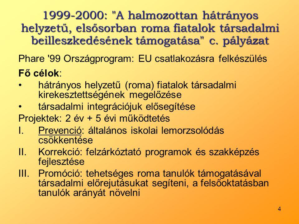 1999-2000: A halmozottan hátrányos helyzetű, elsősorban roma fiatalok társadalmi beilleszkedésének támogatása c. pályázat