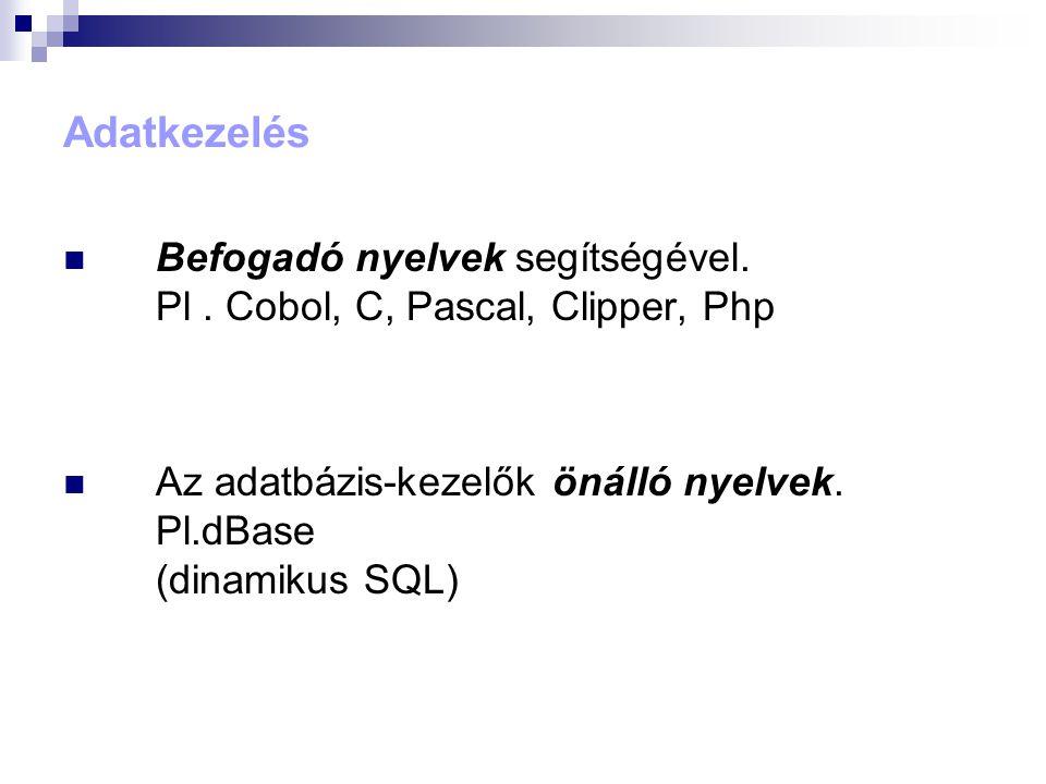 Adatkezelés Befogadó nyelvek segítségével. Pl . Cobol, C, Pascal, Clipper, Php.