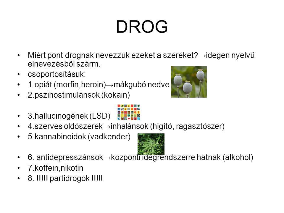 DROG Miért pont drognak nevezzük ezeket a szereket →idegen nyelvű elnevezésből szárm. csoportosításuk: