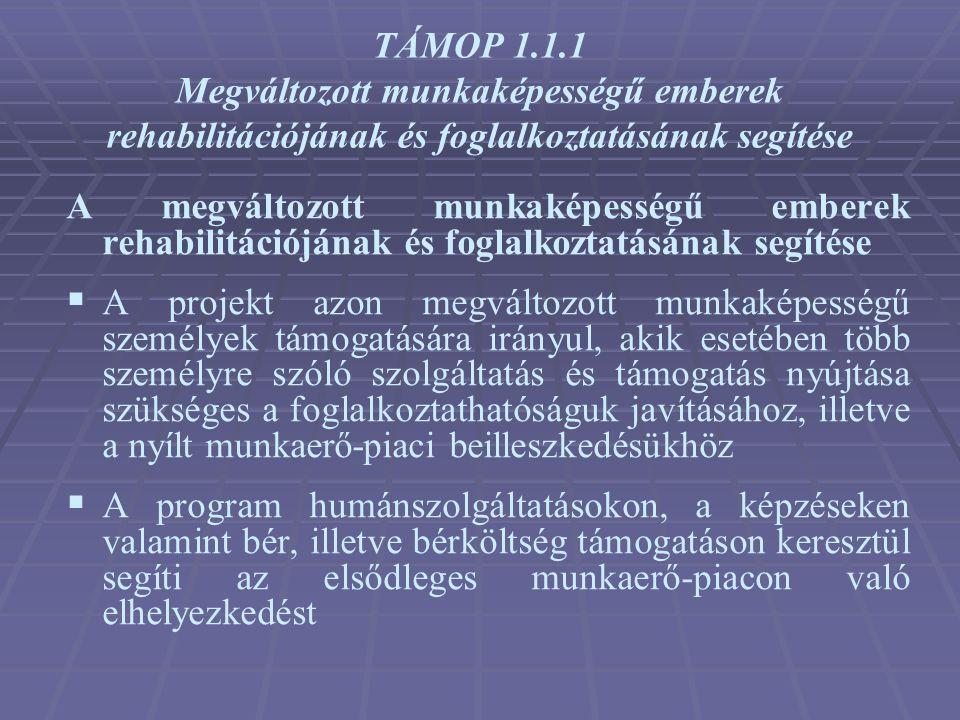 TÁMOP 1.1.1 Megváltozott munkaképességű emberek rehabilitációjának és foglalkoztatásának segítése
