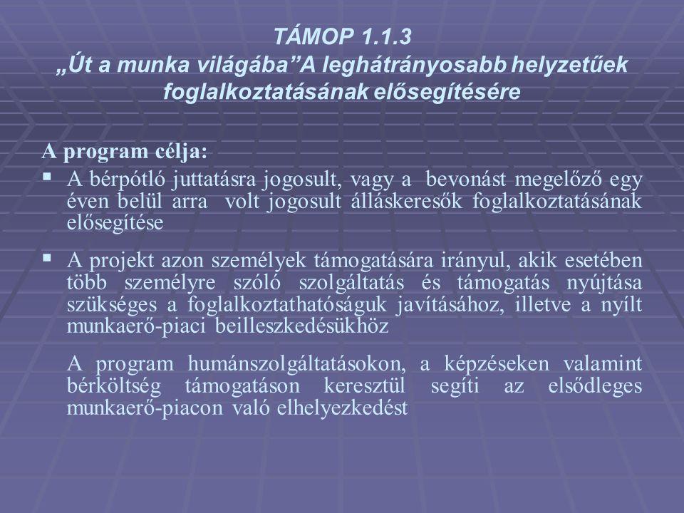 """TÁMOP 1.1.3 """"Út a munka világába A leghátrányosabb helyzetűek foglalkoztatásának elősegítésére"""