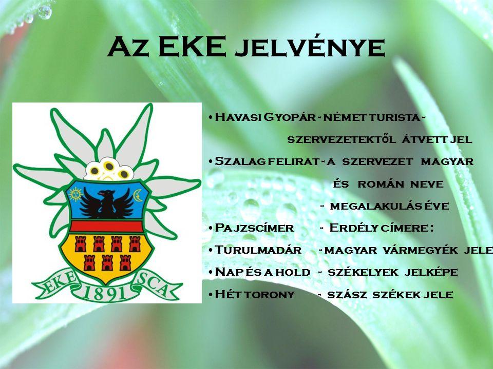 Az EKE jelvénye Havasi Gyopár - német turista -