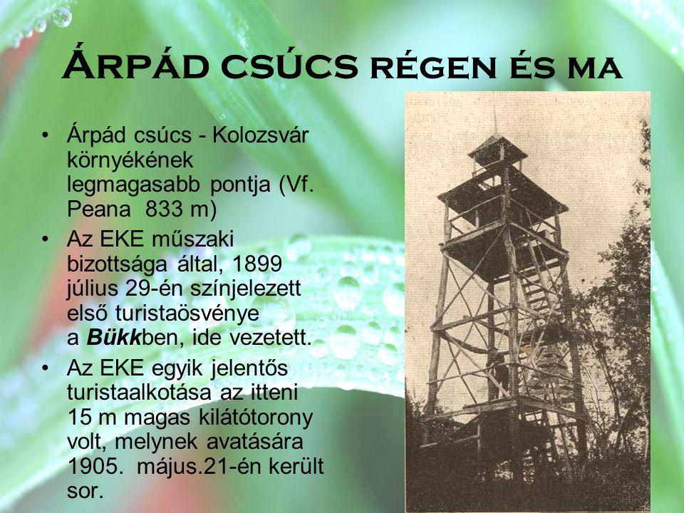 Árpád csúcs régen és ma Árpád csúcs - Kolozsvár környékének legmagasabb pontja (Vf. Peana 833 m)