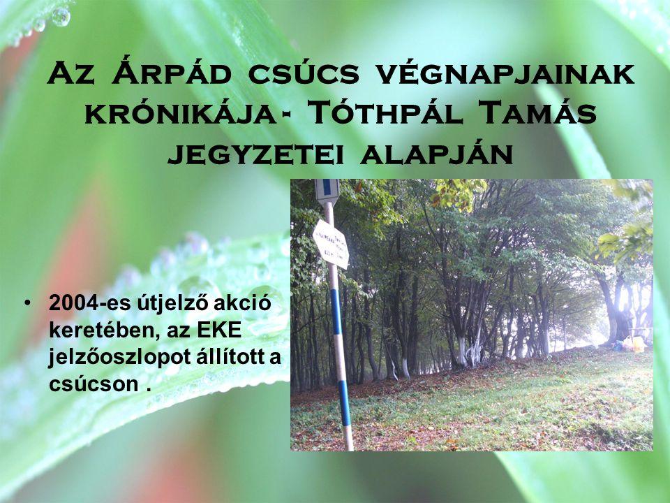 Az Árpád csúcs végnapjainak krónikája - Tóthpál Tamás jegyzetei alapján