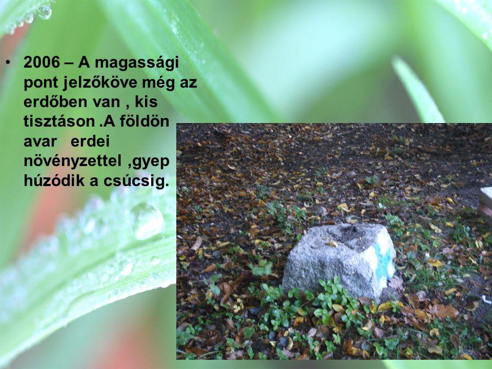 2006 – A magassági pont jelzőköve még az erdőben van , kis tisztáson
