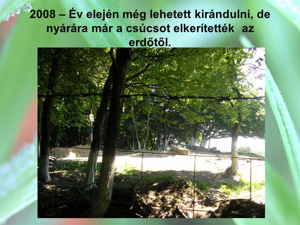 2008 – Év elején még lehetett kirándulni, de nyárára már a csúcsot elkerítették az erdőtől.