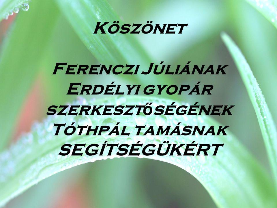 Köszönet Ferenczi Júliának Erdélyi gyopár szerkesztőségének Tóthpál tamásnak SEGÍTSÉGÜKÉRT