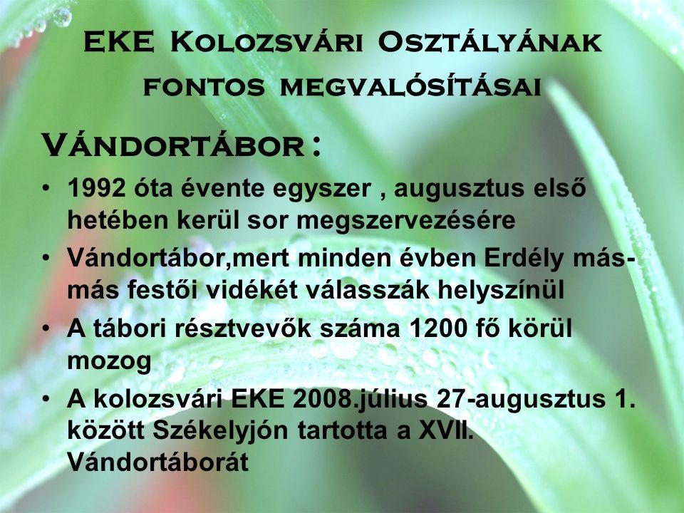 EKE Kolozsvári Osztályának fontos megvalósításai
