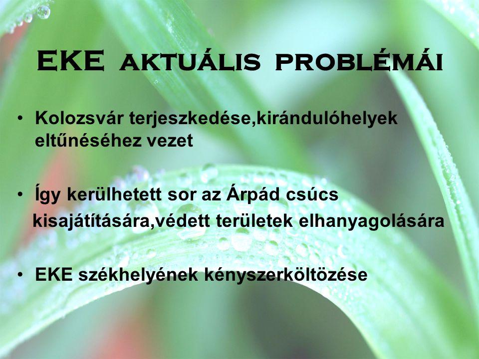 EKE aktuális problémái