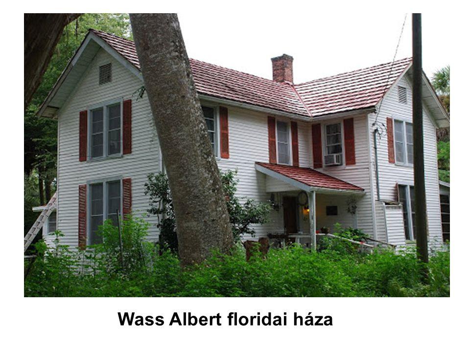 Wass Albert floridai háza