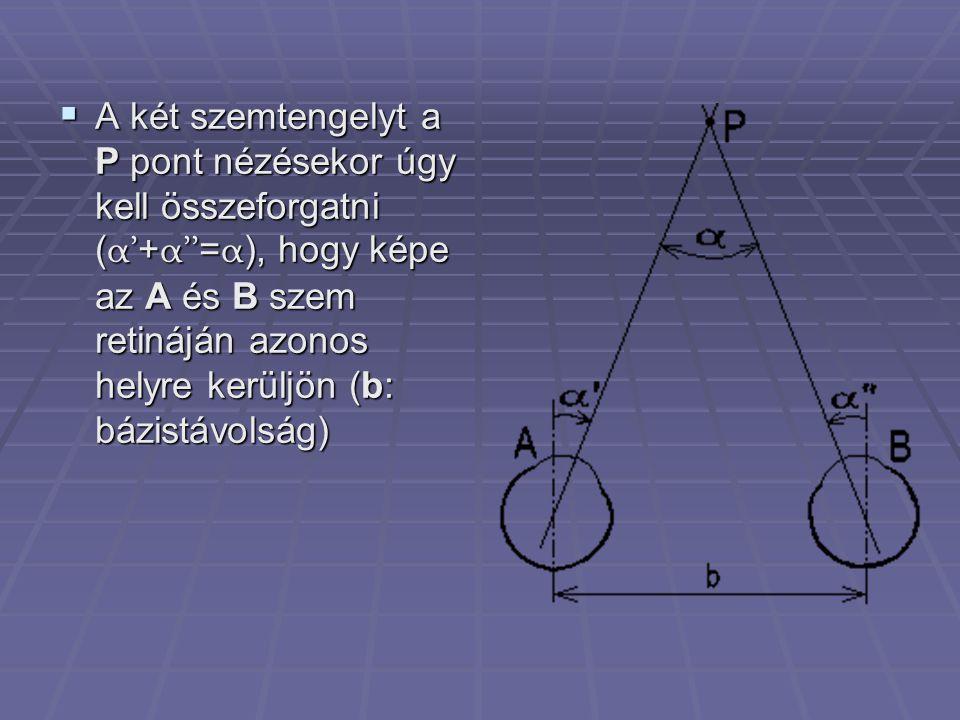 A két szemtengelyt a P pont nézésekor úgy kell összeforgatni (α'+α''=α), hogy képe az A és B szem retináján azonos helyre kerüljön (b: bázistávolság)