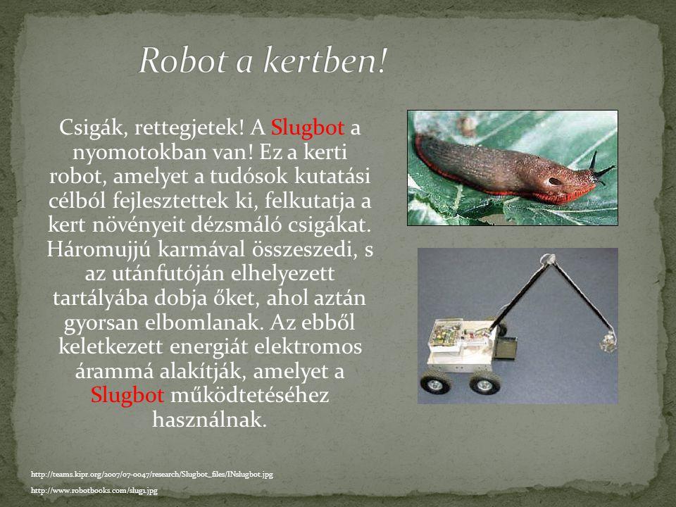 Robot a kertben!