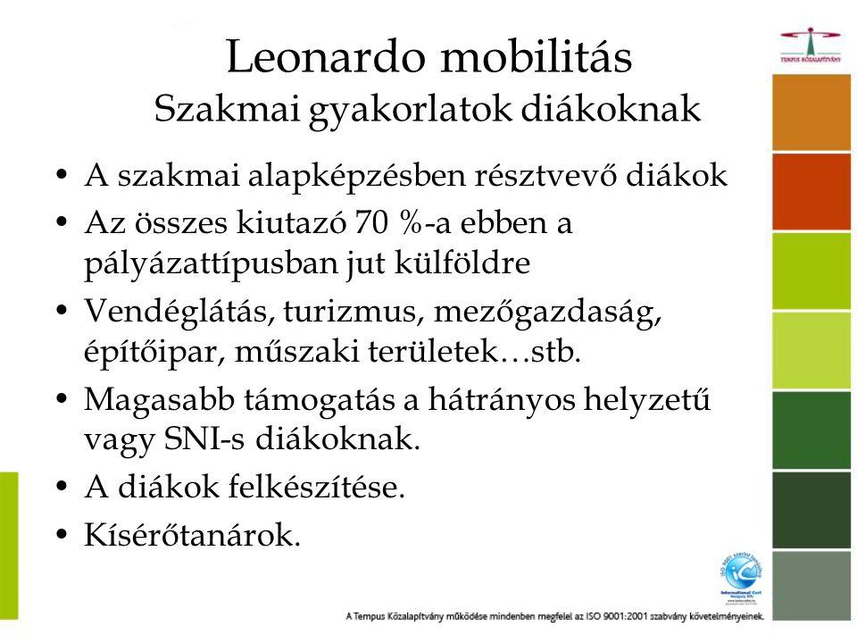 Leonardo mobilitás Szakmai gyakorlatok diákoknak