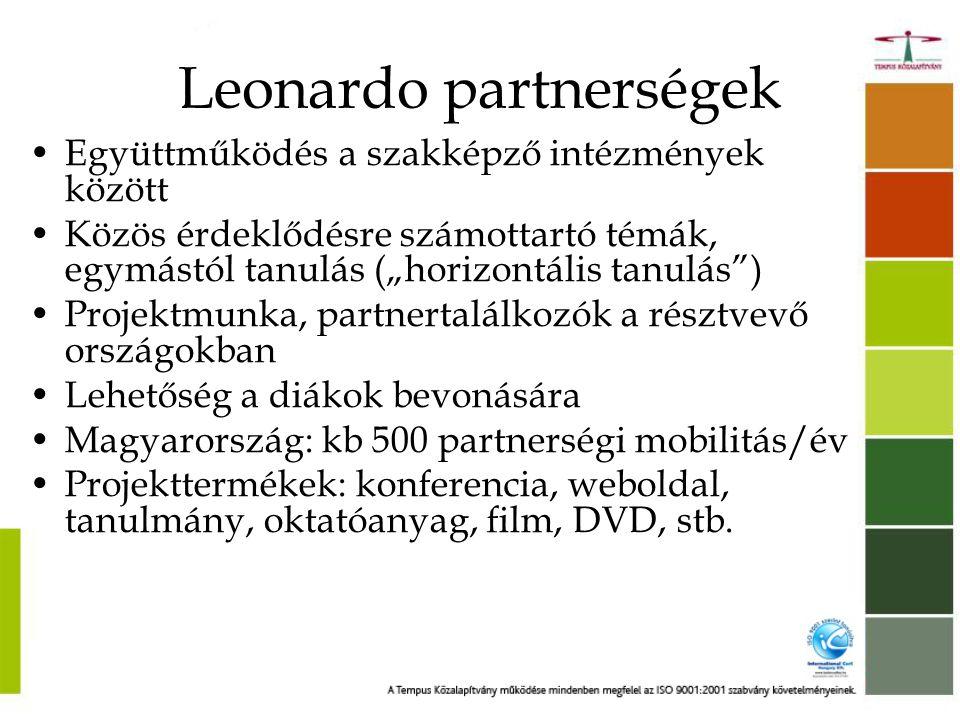 Leonardo partnerségek