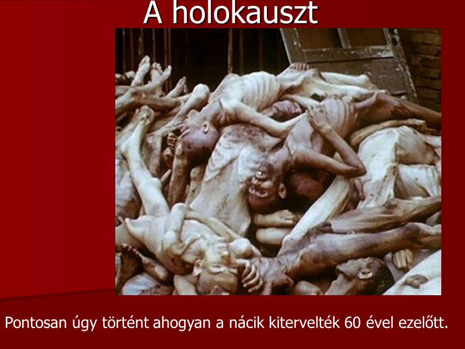 A holokauszt Pontosan úgy történt ahogyan a nácik kitervelték 60 ével ezelőtt.