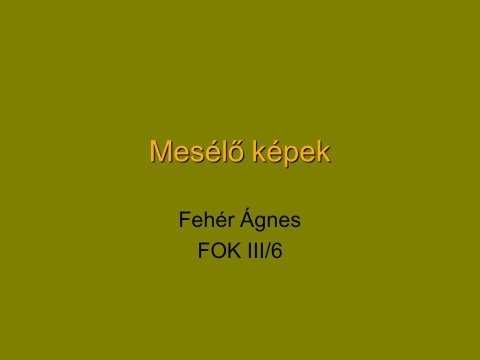 Mesélő képek Fehér Ágnes FOK III/6