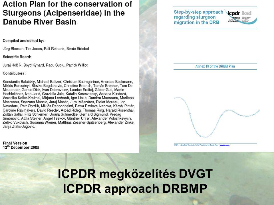 ICPDR megközelítés DVGT ICPDR approach DRBMP