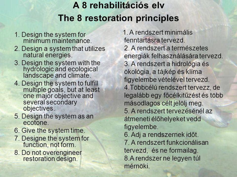 A 8 rehabilitációs elv The 8 restoration principles