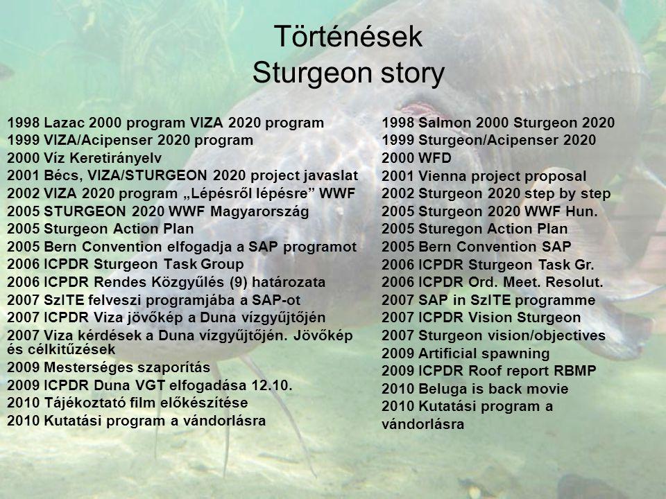 Történések Sturgeon story