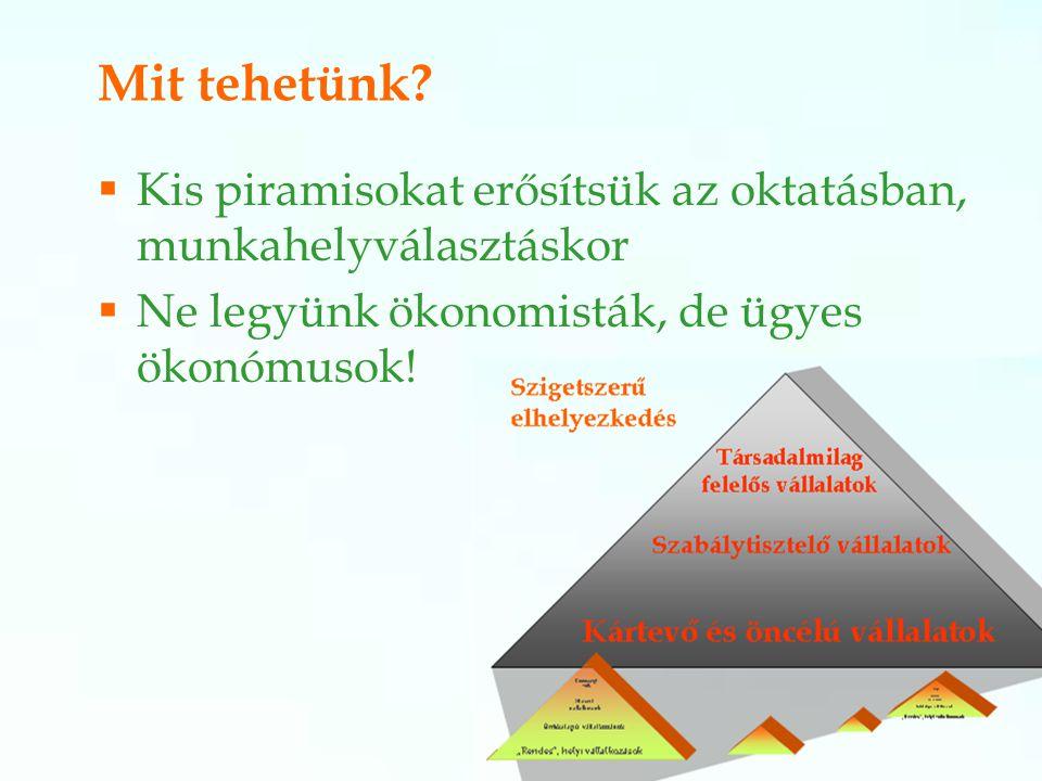 Mit tehetünk. Kis piramisokat erősítsük az oktatásban, munkahelyválasztáskor.