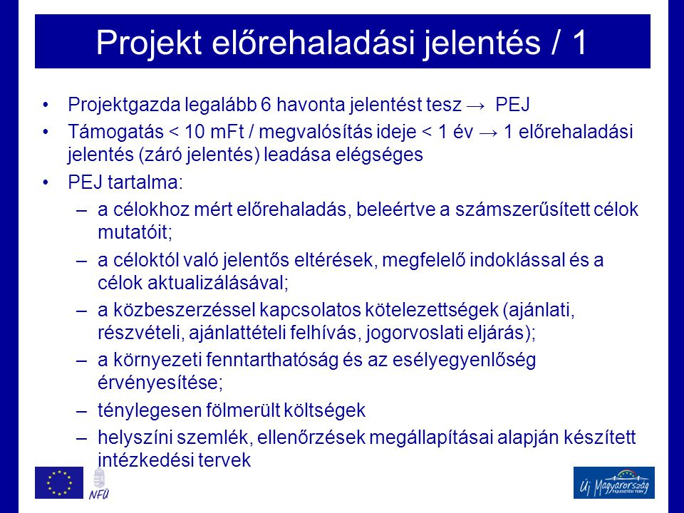 Projekt előrehaladási jelentés / 1