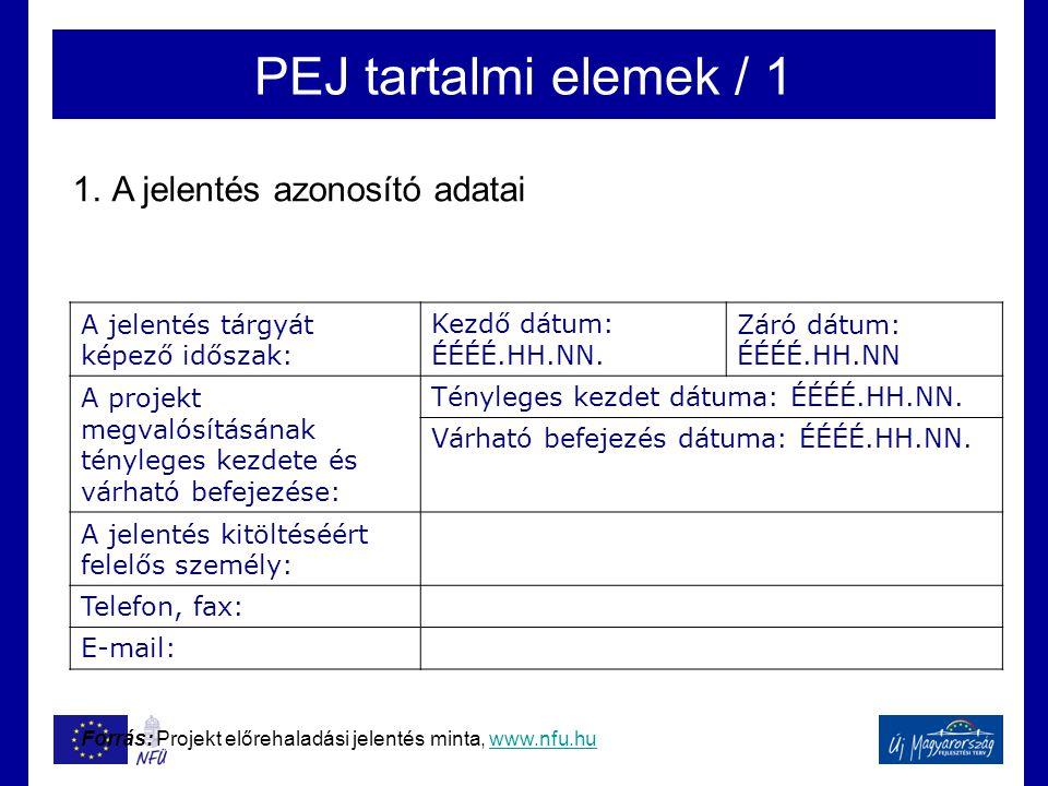 PEJ tartalmi elemek / 1 A jelentés azonosító adatai