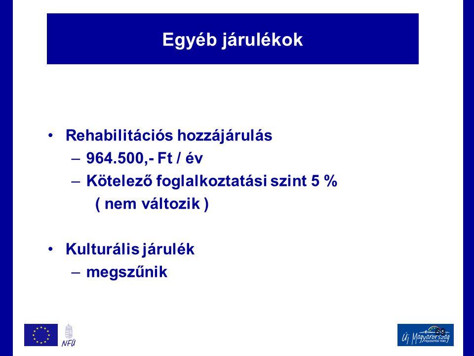 Egyéb járulékok Rehabilitációs hozzájárulás 964.500,- Ft / év